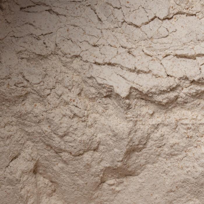 Farine de blé entier (à pain) de culture naturelle